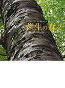 芦生の森 The last virgin forest in Western Japan 2