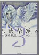 天使禁猟区 第3巻