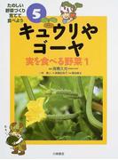 キュウリやゴーヤ (たのしい野菜づくり育てて食べよう 実を食べる野菜)