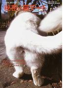 秘密の猫デート 東京、彼らのラブアフェア なかやまあきこ写真集 (Tsukasa mook)