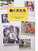 働く犬たち