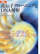 図解遺伝子クローニングとDNA解析
