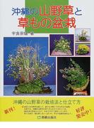 沖縄の山野草と草もの盆栽 山野草を育て緑のある生活を楽しむ 創作山野草の面白み 創作草もの盆栽