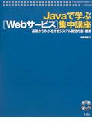 Javaで学ぶ〈Webサービス〉集中講座 基礎からわかる分散システム開発の新・標準 (Programmer's lounge)