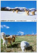 大草原のドッグパラダイス 八ケ岳「犬の牧場」の365日