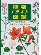 植物イラスト図鑑