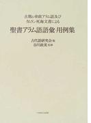 聖書アラム語語彙・用例集 古期&帝政アラム語及びクムラン死海文書による