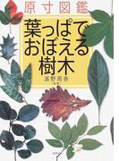 葉っぱでおぼえる樹木 原寸図鑑