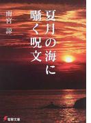 夏月の海に囁く呪文 (電撃文庫)(電撃文庫)