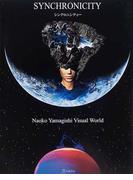 シンクロニシティー Naoko Yamagishi visual world