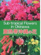 亜熱帯沖縄の花 花ごよみ