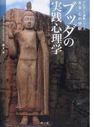 ブッダの実践心理学 アビダンマ講義シリーズ 第2巻 心の分析