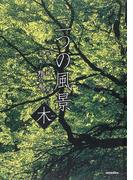 二つの風景 木