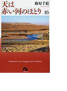 天は赤い河のほとり(小学館文庫) 16巻セット(小学館文庫)