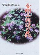 金剛山周辺の花