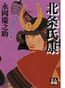 北条氏康 (人物文庫)(人物文庫)