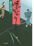 暁のひかり 新装版 (文春文庫)(文春文庫)