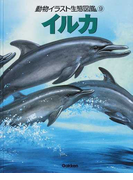動物イラスト生態図鑑 図書館版 9 イルカ