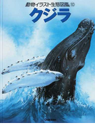 動物イラスト生態図鑑 図書館版 10 クジラ