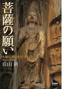 菩薩の願い 大乗仏教のめざすもの (NHKライブラリー)