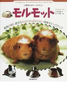 モルモット (SMALL ANIMAL POCKET BOOK SERIES 小動物ビギナーズガイド)
