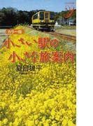 小さい駅の小さな旅案内 カラー版 (COLOR新書y)