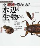 今、絶滅の恐れがある水辺の生き物たち タガメ ゲンゴロウ マルタニシ トノサマガエル ニホンイシガメ メダカ (ヤマケイ情報箱)