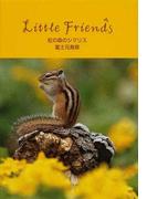 虹の森のシマリス (Little Friends)