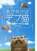 気が付けばデブ猫 ニャン吉のぐ〜たら日記