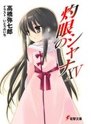 灼眼のシャナ 15 (電撃文庫)(電撃文庫)