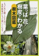 葉っぱ・花・樹皮でわかる樹木図鑑 もっと木と親しむために 自然散策がもっと楽しくなる!