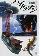 ハイドゥナン 3 (ハヤカワ文庫 JA)(ハヤカワ文庫 JA)