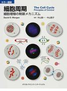 細胞周期 カラー図説 細胞増殖の制御メカニズム