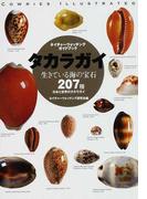 タカラガイ 生きている海の宝石 日本と世界のタカラガイ207種 (ネイチャーウォッチングガイドブック)