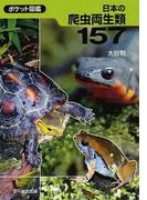 日本の爬虫両生類157