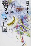 夢見る水の王国 上 (カドカワ銀のさじシリーズ)