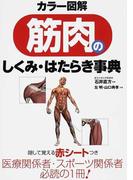 筋肉のしくみ・はたらき事典 カラー図解