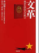 文革 南京大学14人の証言