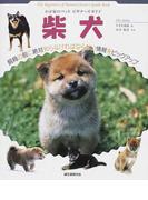 柴犬 (ANIMAL POCKET BOOK SERIES わが家のペットビギナーズガイド)