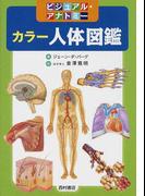 カラー人体図鑑 ビジュアル・アナトミー