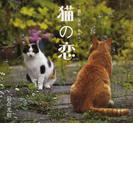 猫の恋 +猫句