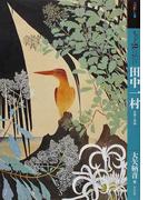 もっと知りたい田中一村 生涯と作品