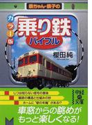 鉄ちゃん・鉄子のカラー版「乗り鉄」バイブル (中経の文庫)(中経の文庫)