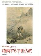 新アジア仏教史 12 躍動する中世仏教