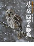 八ケ岳四季の野鳥 吉野俊幸写真集 (BIRDER SPECIAL)