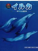 クジラ・イルカのなぞ99 世界の...