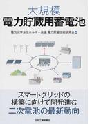 大規模電力貯蔵用蓄電池
