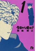 今日から俺は!!(小学館文庫) 18巻セット(小学館文庫)