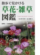 散歩で見かける草花・雑草図鑑
