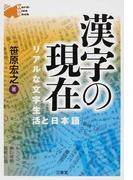 漢字の現在 リアルな文字生活と日本語 (Word‐Wise Book)